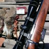 A Video Review and Hunt with the CZ Model 527 in .17 Hornet